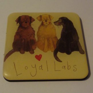 Koelkastmagneet loyal labs Alex Clark 6x6