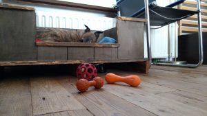 spip en hurley kauwbotje bal en hondenspeeltjes
