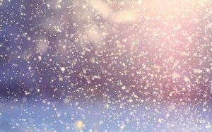 Sneeuwvlokken als hondenspeelgoed