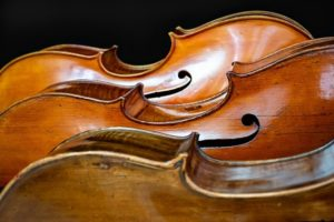 Muziek heeft invloed op gedrag honden