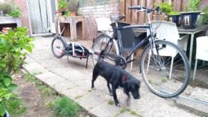 fiets met fietskar